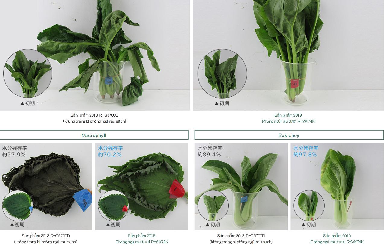 Quá trình bảo quản rau củ